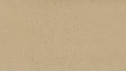 Βελούδο μαλακό Μονόχρωμο - Μπεζ Ανοιχτό - NoVelvet/196